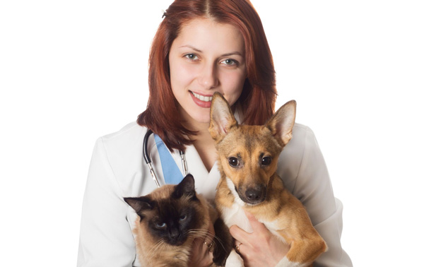 Treat your pet Veterinary compounding medication